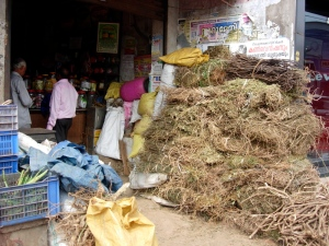 Roots and herbs at an Ayurveda shop